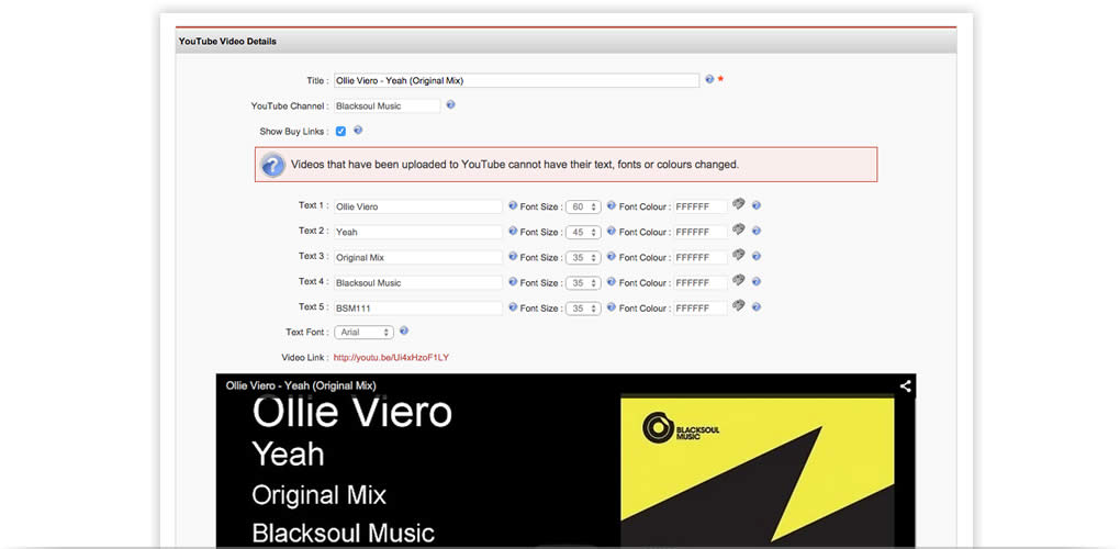 You can create fully branded music videos and upload them to your YouTube channel